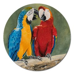 Feathered Friends Magnet 5  (round)