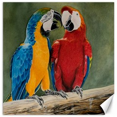 Feathered Friends Canvas 12  x 12  (Unframed)
