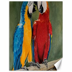 Feathered Friends Canvas 12  x 16  (Unframed)