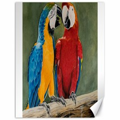 Feathered Friends Canvas 18  X 24  (unframed)