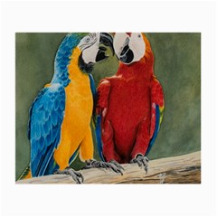 Feathered Friends Glasses Cloth (Small, Two Sided)