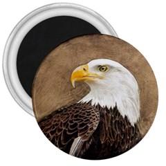 Eagle 3  Button Magnet