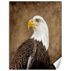 Eagle Canvas 18  x 24  (Unframed)