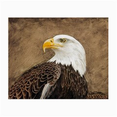 Eagle Glasses Cloth (Small, Two Sided)