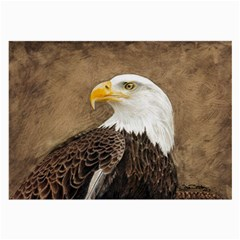Eagle Glasses Cloth (Large, Two Sided)
