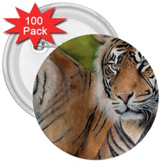 Soft Protection 3  Button (100 pack)