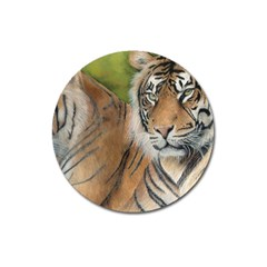 Soft Protection Magnet 3  (Round)