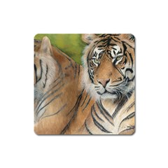 Soft Protection Magnet (Square)