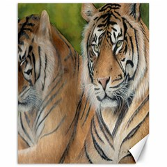 Soft Protection Canvas 16  X 20  (unframed)