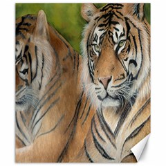 Soft Protection Canvas 20  x 24  (Unframed)