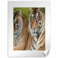 Soft Protection Canvas 36  x 48  (Unframed)