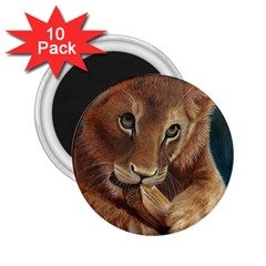 Playful  2.25  Button Magnet (10 pack)