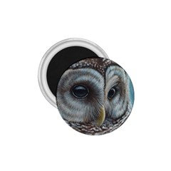 Barred Owl 1.75  Button Magnet