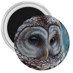Barred Owl 3  Button Magnet
