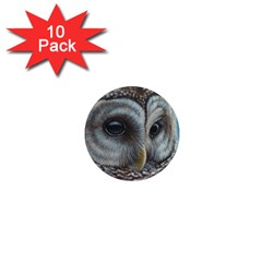 Barred Owl 1  Mini Button Magnet (10 pack)