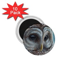 Barred Owl 1.75  Button Magnet (10 pack)