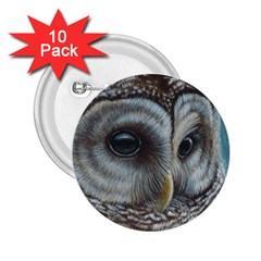 Barred Owl 2 25  Button (10 Pack)