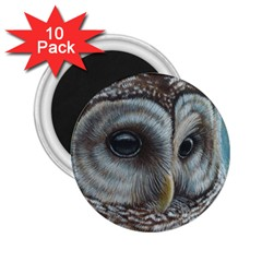 Barred Owl 2 25  Button Magnet (10 Pack)