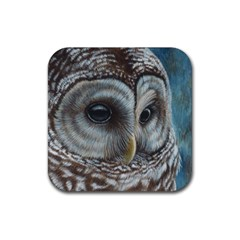 Barred Owl Drink Coasters 4 Pack (Square)