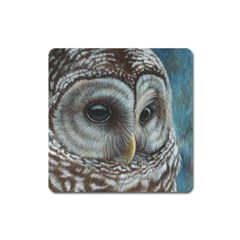 Barred Owl Magnet (Square)