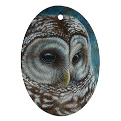 Barred Owl Oval Ornament (two Sides)