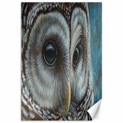 Barred Owl Canvas 12  x 18  (Unframed)