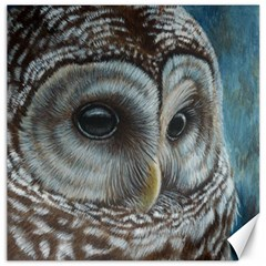 Barred Owl Canvas 16  x 16  (Unframed)
