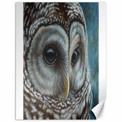 Barred Owl Canvas 18  x 24  (Unframed)