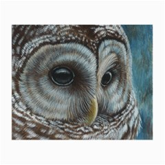 Barred Owl Glasses Cloth (Small, Two Sided)