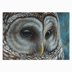 Barred Owl Glasses Cloth (large, Two Sided)