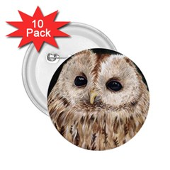 Tawny Owl 2.25  Button (10 pack)