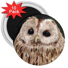 Tawny Owl 3  Button Magnet (10 pack)