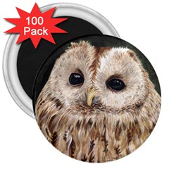 Tawny Owl 3  Button Magnet (100 pack)