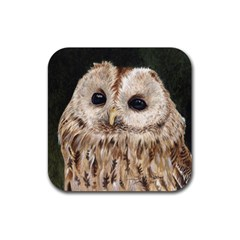 Tawny Owl Drink Coasters 4 Pack (Square)