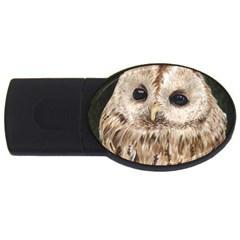 Tawny Owl 2gb Usb Flash Drive (oval)