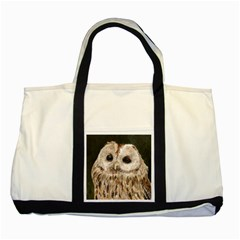 Tawny Owl Two Toned Tote Bag