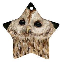 Tawny Owl Star Ornament (two Sides)