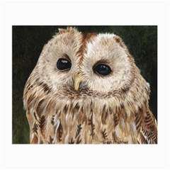 Tawny Owl Glasses Cloth (small, Two Sided)