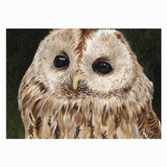 Tawny Owl Glasses Cloth (large, Two Sided)