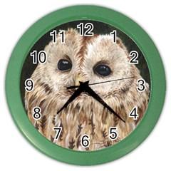 Tawny Owl Wall Clock (Color)