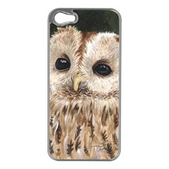 Tawny Owl Apple iPhone 5 Case (Silver)