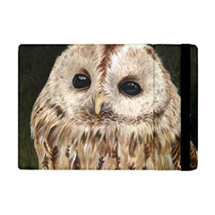 Tawny Owl Apple Ipad Mini Flip Case