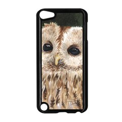 Tawny Owl Apple Ipod Touch 5 Case (black)