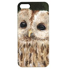 Tawny Owl Apple iPhone 5 Hardshell Case with Stand
