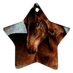 Midnight Jewel  Star Ornament (Two Sides)