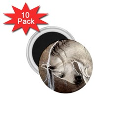 Humble 1.75  Button Magnet (10 pack)