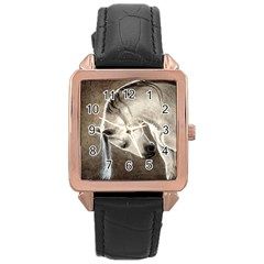 Humble Rose Gold Leather Watch