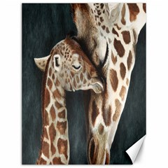 A Mother s Love Canvas 12  x 16  (Unframed)