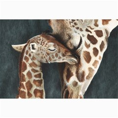 A Mother s Love Canvas 12  x 18  (Unframed)