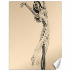 Graceful Dancer Canvas 12  x 16  (Unframed)
